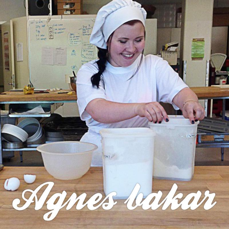 Agnes Åströms blogg